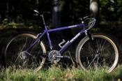 wtb_rider's Brodie Catalyst